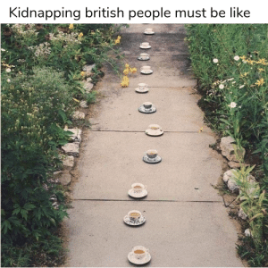 Fancy a cuppa? by DreadParadox MORE MEMES: Fancy a cuppa? by DreadParadox MORE MEMES