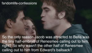 Being Weird, Cats, and Life: fandomlife-confessions  So the only reason Jacob was attracted to Bella was  the tiny half-embryo of Renesmee calling out to him,  right? So why wasn't the other half of Renesmee  calling out to him from Edward's ballsack? thebaconsandwichofregret:  cats-and-cacti: i am LOVING the Twilight Renaissance  Everyone in the comments talking about how a woman is born with all her eggs and has them her whole life but a sperm cell is only made maybe a couple of days before conception and now all I can think of is that one really weird week, right before Edward and Bella get married, where Jacob is freaking out because he finds Edward smoking hot out of nowhere and that's why he was being weird at the wedding.   I dont know shit about twilight but this is the funniest thing Ive read all day