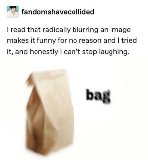 Funny, Image, and Reason: fandomshavecollided  I read that radically blurring an image  makes it funny for no reason and I tried  it, and honestly I can't stop laughing.  bag Me_irl
