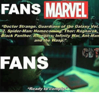"Doctor, Spider, and Deadpool: FANS MARAEL  ""Doctor Strange. Guardians of the Galaxy Vol.  12. Spider-Man: Homecoming. Thor: Ragnarok,  Black Panther Avengers Infinity War Ant-Man  and the Wasp  FANS  ""Ready to comply ~Deadpool"