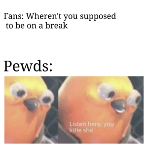 (An Interesting Title): Fans: Wheren't you supposed  to be on a break  Pewds:  Listen here, you  little shit (An Interesting Title)