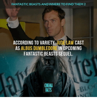I am very happy about this news. He is a very cool actor. I wonder if they will show one of the versions, which by the way supports J. K. Rowling, about the fact that Dumbledore was unfortunately in love with his future enemy GrindelWald?! Your thoughts? — judelaw Dumbledore harrypotter fantasticbeasts fantasticbeastsandwheretofindthem cinema_facts wizard johnnydepp adventure: FANTASTIC BEASTS AND WHERE TO FIND THEM 2  ACCORDING TO VARIETY  UDE LAW CAST  AS  ALBUS DUMBLEDORE IN UPCOMING  FANTASTIC BEASTS SEQUEL.  CINEMA  FACTS I am very happy about this news. He is a very cool actor. I wonder if they will show one of the versions, which by the way supports J. K. Rowling, about the fact that Dumbledore was unfortunately in love with his future enemy GrindelWald?! Your thoughts? — judelaw Dumbledore harrypotter fantasticbeasts fantasticbeastsandwheretofindthem cinema_facts wizard johnnydepp adventure