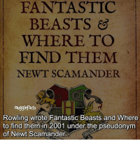 """qotd : comment """"😏"""" if you knew this and """"😱"""" if you didn't. Also, i made a new account @13reasqnswhy , please follow it❤ only if you want tho. fc: 97,4k: FANTASTIC  BEASTS  WHERE TO  FIND THEM  NEWT SCAM ANDER  muggle facts  Rowling wrote Fantastic Beasts and Where  to find them in 2001 under the pseudonym  of Newt Scamander qotd : comment """"😏"""" if you knew this and """"😱"""" if you didn't. Also, i made a new account @13reasqnswhy , please follow it❤ only if you want tho. fc: 97,4k"""