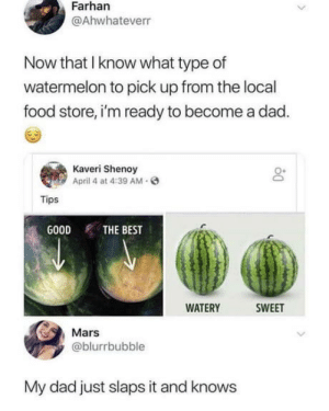 Dad, Food, and Best: Farhan  @Ahwhateverr  Now that I know what type of  watermelon to pick up from the local  food store, i'm ready to become a dad.  Kaveri Shenoy  April 4 at 4:39 AM.  04  Tips  G00D THE BEST  WATERY WEET  Mars  @blurrbubble  My dad just slaps it and knows I am now the 9Dad