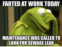 Work, Today, and Mexican Word of the Day: FARTED AT WORK TODAY  MAINTENANCE WAS CALLED TO  LOOK FORISEWAGE LEAK