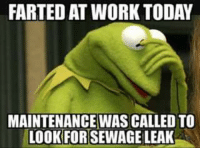 Kermit the Frog: FARTED AT WORK TODAY  MAINTENANCE WASICALLED TO  LOOKFORTSEWAGELEAK