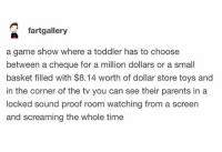 Funny, Parents, and Best: fartgallery  a game show where a toddler has to choose  between a cheque for a million dollars or a small  basket filled with $8.14 worth of dollar store toys and  in the corner of the tv you can see their parents in a  locked sound proof room watching from a screen  and screaming the whole time This is wrong in the best way possible.