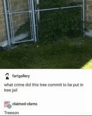 This is what happened to groot: fartgallery  what crime did this tree commit to be put in  tree jail  claimed-clams  Treeson This is what happened to groot