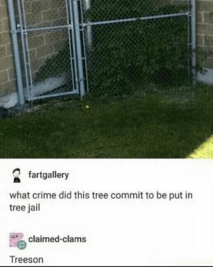 Found on r/me_irl: fartgallery  what crime did this tree commit to be put in  tree jail  claimed-clams  Treeson Found on r/me_irl