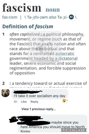 America, Facebook, and Facepalm: fascism noun  fas cism  fa-shi-zam also 'fa-si-  Definition of fascism  often capitalizedapolitical philosophy,  movement, or regime (such as that of  the Fascisti) that exalts nation and often  race above the individual and that  stands for a centralized autocratic  1  government headed by a dictatorial  leader, severe economic and social  regimentation, and forcible suppression  of opposition  a tendency toward or actual exercise of  2  I'll take it over socialism any day  6h Like  Reply  View 1 previous reply...  maybe since you  hate America you should move to North  PIC COLLAGE  Korea Fascism > Socialism 🤦🏼♂️ from Facebook