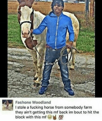 Anaconda, Cars, and Fucking: Fashone Woodland  I stole a fucking horse from somebody farm  they ain't getting this mf back im bout to hit the  block with this mf 100  sl a fucking horse from somebody farm y'all still use cars for drivebys? Y'all can catch me on my scooter hit niggas ankle's