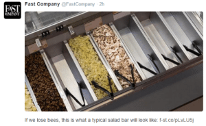 Tumblr, Blog, and Http: Fast Company@FastCompany 2h  FAST  COMPAN  If we lose bees, this is what a typical salad bar will look like: f-st.co/pLVLUS vondell-txt:  1. this is a real and important issue 2. this tweet could also have been tweeted from a universe where salad bars are mostly filled with bees