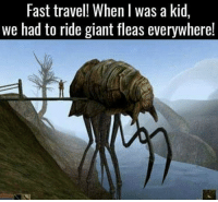 Memes, Fallout, and Giant: Fast travel! When l was a kid,  we had to ride giant fleas everywhere! Never forget the majestic Silt Striders. I thought it was awesome that you can use them to travel again in ESO: Morrowind. . . Check out my IG partners @themattycakesproject, @thefallouthandbook, @civilfallout, @fallout.jokes, and @videogame.trivia!