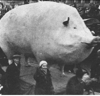 Fat, Acceptance, and Fat Acceptance Movement: Fat acceptance movement [1953]