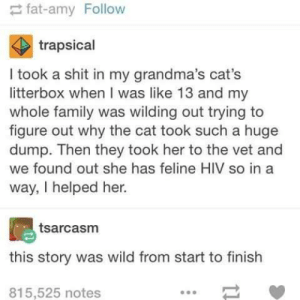 Litter box dramaomg-humor.tumblr.com: fat-amy Follow  trapsical  I took a shit in my grandma's cat's  litterbox when I was like 13 and my  whole family was wilding out trying to  figure out why the cat took such a huge  dump. Then they took her to the vet and  we found out she has feline HIV so in a  way, I helped her.  tsarcasm  this story was wild from start to finish  815,525 notes Litter box dramaomg-humor.tumblr.com