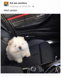 honestly such a good fb page: Fat ass woofers  Yesterday at 10:35 AM .  Mash potate honestly such a good fb page