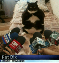 Bbw, Memes, and Shit: Fat Dix  HOME OWNER sorry i was gone everyone, basically I told this chick she can't be riding my face all aggressive n shit I got asthma I couldn't fuckin breathe she fucked around and gave me an asthma attack now I'm at the hospital tryna get my lungs back to their normal size I don't even got insurance this is all coming outta pocket man I almost died moral of the story don't let a bbw ride your face😔😔💯....🍩c [pic n caption unrelated]
