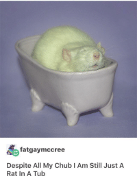 Rat in a Tub: fatgaymccree  Despite All My Chub I Am Still JustA  Rat In A Tub Rat in a Tub