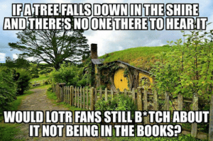 Books, Tumblr, and Blog: FATREE FALLS DOWNIN THESHIRE  AND THERES NOONE THERETO  HEARIT  WOULD LOTR FANS STILL B TCH ABOUT  IT NOT BEING IN THE BOOKS? srsfunny:Anyone Else Finds Them Annoying?
