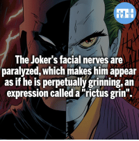 """Batman, Memes, and Superman: FATSHERDES  The Joker's facial nerves are  paralyzed, which makes him appear  as if he is perpetually grinning, an  expression called a""""rictus grin"""". Would you rather always be smiling or frowning?!- My other IG accounts @factsofflash @yourpoketrivia @webslingerfacts ⠀⠀⠀⠀⠀⠀⠀⠀⠀⠀⠀⠀⠀⠀⠀⠀⠀⠀⠀⠀⠀⠀⠀⠀⠀⠀⠀⠀⠀⠀⠀⠀⠀⠀⠀⠀ ⠀⠀--------------------- batmanvssuperman xmen batman superman wonderwoman deadpool spiderman hulk thor ironman marvel bluelantern theflash wolverine daredevil aquaman justiceleague homecoming blackpanther wallywest brucewayne redhood avengers zoom wadewilson raven evildeadpool like4like injustice2"""