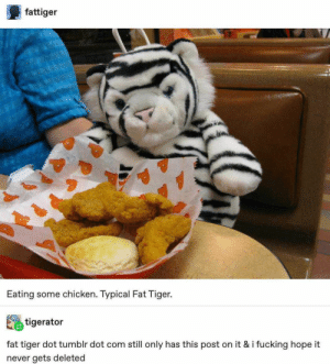 27+ Super Entertaining Tumblr Posts That Will Make You Go ROFL - LADnow: fattiger  Eating some chicken. Typical Fat Tiger.  tigerator  fat tiger dot tumblr dot com still only has this post on it & i fucking hope it  never gets deleted 27+ Super Entertaining Tumblr Posts That Will Make You Go ROFL - LADnow