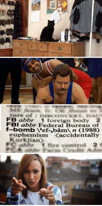 """Fbi, Fire, and Ron Swanson: FB abbr 1 foreign body 2  FBI abbr Federal Bureau of  f-bomb 'ef-,bäm n (1988)  euphemism <accidentally  1 fire control 2f <p><strong><em>These lanks gonna make ya thank!</em></strong></p> <p>This cat is a jerk. (<a href=""""http://cheezburger.com/40737793"""" target=""""_blank"""">DailyWhat</a>)</p> <p>Ron Swanson wrestling. There's nothing more to type. (<a href=""""http://splitsider.com/2012/08/some-of-your-fave-nbc-characters-have-silly-olympic-fun/"""" target=""""_blank"""">SplitSider</a>)</p> <p>The f-bomb is legit. (<a href=""""http://www.buzzfeed.com/andrewkaczynski/7-silly-slang-terms-that-are-now-officially-in-the"""" target=""""_blank"""">BuzzFeed</a>)</p> <p>Have an Olympic hangover? Well here are Great Britain's Olympians lip syncing to Queen. (<a href=""""http://www.buzzfeed.com/joefry/watch-brittains-olympic-team-sing-dont-stop-me-70dj"""" target=""""_blank"""">BuzzFeed</a>)</p>"""