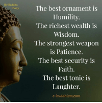 ornaments: fb/Buddha  Daily  The best ornament is  Humility  The richest wealth is  Wisdom  The strongest weapon  is Patience.  The best security is  Faith.  The best tonic is  Laughter.  e-buddhism com