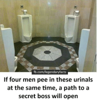 Gamers would know: fb.com/legendaryfacts  If four men pee in these urinals  at the same time, a path to a  secret boss will open Gamers would know