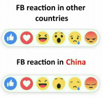 reaction: FB reaction in other  countries  FB reaction in China
