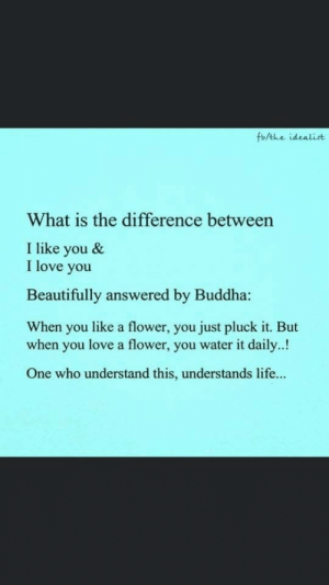 Love: fb/the idealist  What is the difference between  I like you &  I love you  Beautifully answered by Buddha:  When you like a flower, you just pluck it. But  when you love a flower, you water it daily..!  One who understand this, understands life... Love