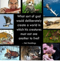 God, Memes, and Browns: FB Thinkin  What sort of god  would deliberately  create a world in  which his creatures  must eat one  another to live?  Nel Noddings  Seeking CW Brown