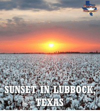 Memes, Earth, and Free: FBCOM/TAREBELS  SUNSET IN:LUBBOCK  TEXAS Being the most flat place on the face of the Earth has its advantages, I guess. This sunset is just breathtaking! RebelTexas SouthLoneStar texas tx lonestar liberty rebel free lonestarstate freetexas texasmade texaspride texasfight lonestarrebellion rednecknation texasstorms texasskies everythingisbiggerintexas madeintexas wheremyheartis thebigtexan mytexas