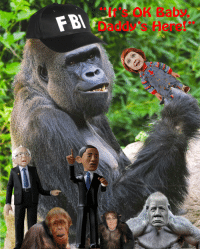 Gorilla Grabs Kid: FBI Gorilla Grabs Kid