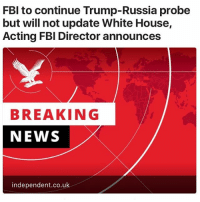 Fbi, News, and White House: FBI to continue Trump-Russia probe  but will not update White House,  Acting FBI Director announces  BREAKING  NEWS  independent.co.uk. 🤔