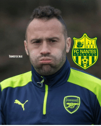 Arsenal, Football, and Memes: FC NANTES  TRANSFER.TALK  94 New Nantes manager Claudio Ranieri is looking to add Arsenal goalkeeper David Ospina to his squad, according to France Football. - The Colombia international shot-stopper has grown tired of playing second-fiddle to first-choice Petr Cech at the Emirates and will force a move this summer.
