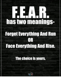 Double TAP if you agree. F.E.A.R. has two meanings - Forget Everything And Run OR Face Everything And Rise. The choice is yours. positiveenergyplus: FE.A.R  has two meanings-  Forget Everything And Run  OR  Face Everything And Rise.  The choice is yours. Double TAP if you agree. F.E.A.R. has two meanings - Forget Everything And Run OR Face Everything And Rise. The choice is yours. positiveenergyplus