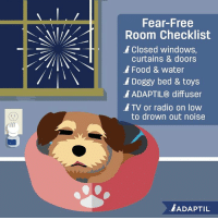 Food, Memes, and Radio: Fear-Free  Room Checklist  Closed windows  curtains & doors  Food & water  Doggy bed & toys  ADAPTIL® diffuser  ATV or radio on low  to drown out noise  ADAPTIL Red, white and BOOM! ADAPTIL® recommends setting up your Doggy Den a few weeks in advance so your furry friend can recognize it as a safe place. For more information: https://bit.ly/2K7UveR