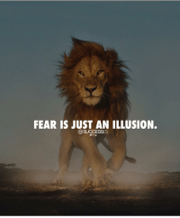 Memes, Fear, and 🤖: FEAR IS JUST AN ILLUSION. Your largest fear is your biggest growth. Successes