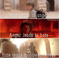 Memes, Star, and Fear: Fear leads to anger  @star warsgang  Anger leads to hate  Hate leads to awesomeness