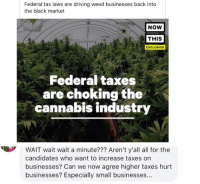 (GC): Federal tax laws are driving weed businesses back into  the black market  NOW  THIS  EXCLUSIVE  Federal taxes  are choking the  cannabis industry  WAIT wait wait a minute??? Aren't y'all all for the  candidates who want to increase taxes on  businesses? Can we now agree higher taxes hurt  businesses? Especially small businesses... (GC)