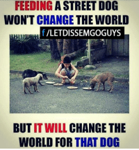Dogs, Memes, and Streets: FEEDING  A STREET DOG  WON'T CHANGE THE WORLD  /LETDISSEMGOGUYS  BUT IT WILL  CHANGE THE  WORLD FOR THAT DOG