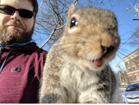 Squirrel, Wild, and Friend: Feeding my wild squirrel friend Butters!