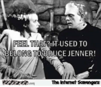 <p>Hilarious picture dump  Wednesday funnies  PMSLweb </p>: FEEL  BELONGTO BRUCEJENNER!  THAT? IT USED TO  The itenet Scavengers <p>Hilarious picture dump  Wednesday funnies  PMSLweb </p>