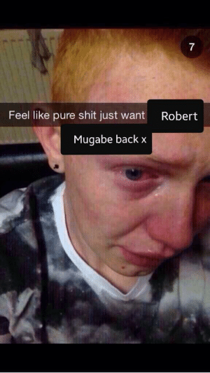 Can't believe he's gone: Feel like pure shit just want  Robert  Mugabe back x Can't believe he's gone