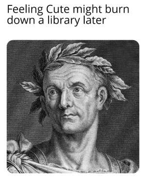 Cute, History, and Library: Feeling Cute might burn  down a library later Caesar Be burnin'