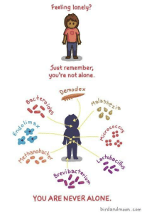 Being Alone, Wholesome, and Never: Feeling lonely?  Just remember,  you're not alone.  Demodex  im a  0  COCc  0  ranobacy  cTo  revi bac  YOU ARE NEVER ALONE.  birdandmoon.com source: birdandmoon.com  more like this @ Wholesome Comics