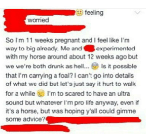 memehumor:  Woman thinks she's pregnant with a horse [xpost /r/trashytext]: feeling  worried  So I'm 11 weeks pregnant and I feel like I'm  way to big already. Me andexperimented  with my horse around about 12 weeks ago but  we we're both drunk as hel... Is it possible  that I'm carrying a foal? 1 can't go into details  of what we did but let's just say it hurt to walk  for a while I'm to scared to have an ultra  sound but whatever I'm pro life anyway, even if  it's a horse, but was hoping y'all could gimme  some advice? memehumor:  Woman thinks she's pregnant with a horse [xpost /r/trashytext]