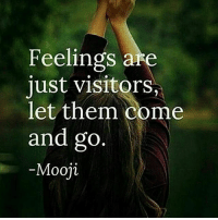 Love, Memes, and Pain: Feelings are  just visitor  let them come  and go  Mooji Follow @awakeningpeople 👈❤ - Be the silent watcher of your thoughts and behavior. You are beneath the thinker. You are the stillness beneath the mental noise. You are the love and joy beneath the pain. - Eckhart Tolle awakespiritual mooji eckharttolle letgo