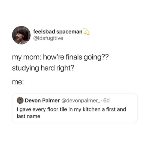 Finals, Mom, and Name: feelsbad spaceman  @ldsfugitive  my mom: how're finals going??  studying hard right?  me:  Devon Palmer @devonpalmer_ 6d  I gave every floor tile in my kitchen a first and  last name 😂