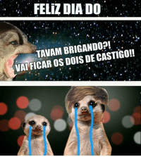 Suricate seboso · Pt-Br (Brazilian Portuguese), International, and Dia   FELIZ DIA DO 97cce5b758